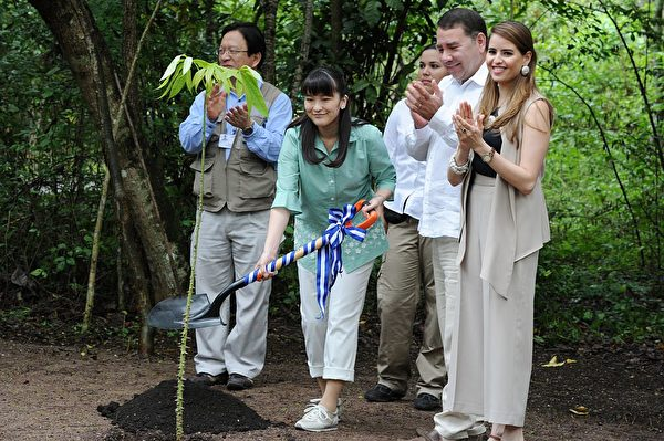 Japanese Princess Mako (C) plants a silk-cotton tree at the Copan archaeological site, 400 km northwest of Tegucigalpa on December 7, 2015. AFP PHOTO / Orlando SIERRA. / AFP / ORLANDO SIERRA (Photo credit should read ORLANDO SIERRA/AFP/Getty Images)
