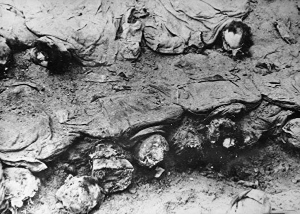 1943年卡廷尸体发掘现场。照片由波兰红十字会拍摄。(公有领域)