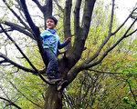 森林里有丰富的原始素材,不论大人或孩子,都可以回归森林学习大自然的智慧。爬上树的恩典自信跟妈妈说:妈妈你看我站得很高耶!(柿子文化提供)
