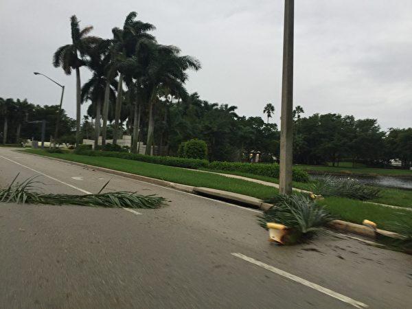 9月9日下午艾瑪颶風的風暴已影響到了南佛羅里達地區。(吳蔚溪/大紀元)