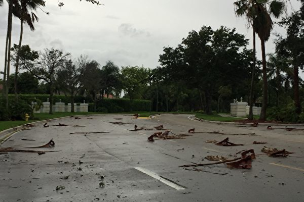 9月9日艾瑪颶風的強風暴雨已到了南佛羅裡達地區。傍晚地上落荒一片。 (吳蔚溪/大紀元)