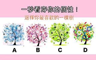 选择图中一棵你喜欢的颜色的树 测出你的个性!