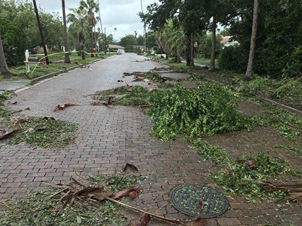 坦帕地区飓风过后铺满树枝的街道.( 周子定/大纪元)
