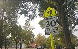 遊樂操場限速在30公里/小時。(陳薇羽/大紀元)