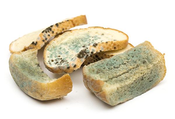 這是麵包上的黴菌。(Fotolia)