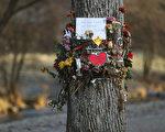 2016年10月,一名19歲大學生遭姦殺,凶嫌是阿富汗難民。此案已經開庭審理,民眾極為關注。(Sean Gallup/Getty Images)