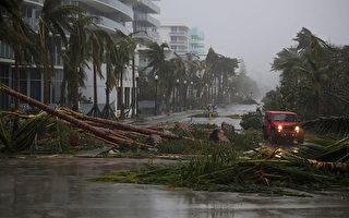 艾瑪颶風9月10日撲向佛羅里達州人口密集的西海岸,給當地帶來狂風和暴雨。 (Joe Raedle/Getty Images)