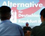 由於反對默克爾的難民政策,選項黨名聲鵲起。但其右翼立場並不被其他主流黨派接受。(ODD ANDERSEN/AFP/Getty Images)