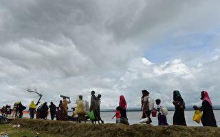 9月12日,逃离缅甸,涌向孟加拉的罗兴亚人。(MUNIR UZ ZAMAN/AFP/Getty Images)