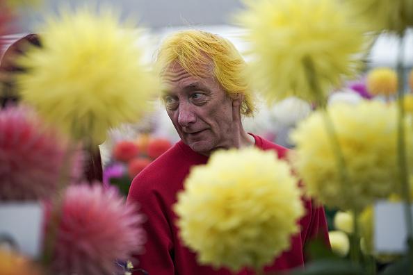 """""""看来,要考虑换成这种流行的发式了。""""图为Harrogate秋季花展,每年9月中旬,英国各地的园艺师和园艺师都会在约克郡展览场地上展出各式各样的珍奇蔬菜、花卉和植物作物。(hristopher Furlong / Getty Images)"""