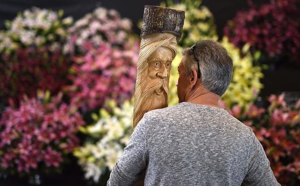 """""""孩子,我才是你的父亲。""""图为9月15日Harrogate秋季花展的木制雕塑。每年9月中旬,英国各地的园艺师和园艺师都会在约克郡展览场地上展出各式各样的珍奇蔬菜、花卉和植物作物。(OLI SCARFF/AFP/Getty Images)"""