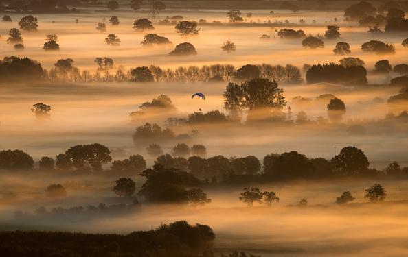 秋日美景。秋日的朝阳使萨默塞特平原上笼罩的雾气染上了金黄色。( Matt Cardy/Getty Images)