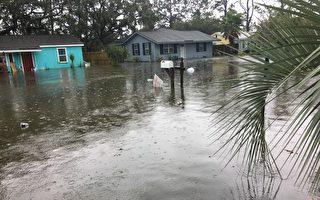 艾瑪颶風給泰碧島(Tybee Island)帶來的水災更甚於去年的馬修颶風。(Cheryl McDaniel提供)