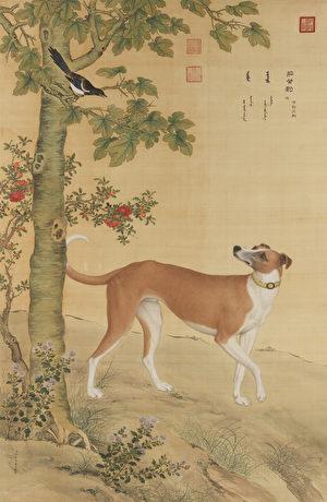 新年狗來運轉 看十全十美《十駿犬》(2)