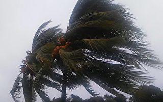 艾瑪颶風給南佛羅里達帶來了狂風暴雨。從9日夜晚到10日一整天,南佛州一直狂風大作。(艾立克/大紀元)