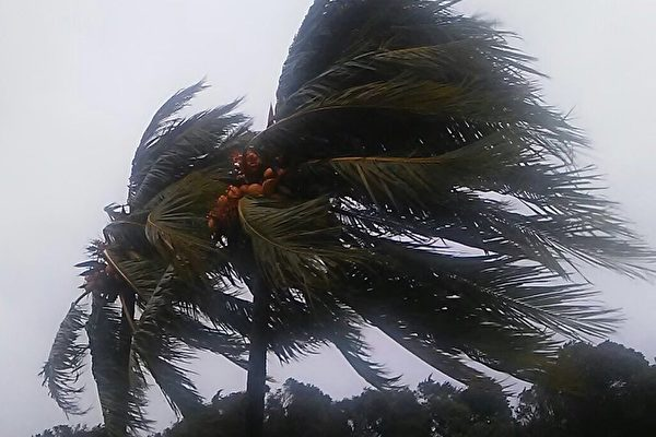 组图:飓风艾玛肆虐 狂风暴雨重击佛州