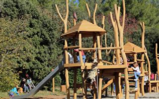游戏广场的天然素材,呼应着孩子的五感亲密接触。(Pxhere CC0 Public Domain)