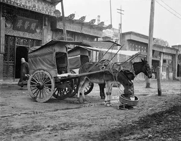 天津街头的马车,摄于1917-1919之间。(甘博/公有领域)