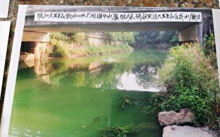 浙江300噸病死豬被偷埋 附近村民患癌多