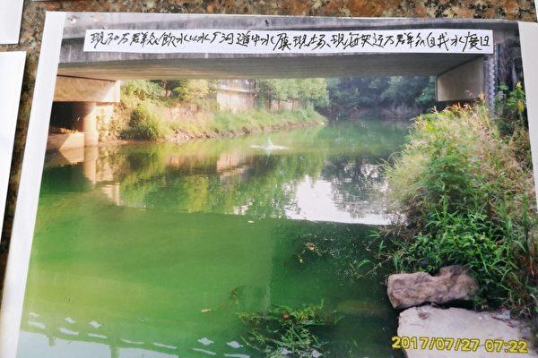 浙江省湖州市长兴县300吨病死猪被掩埋在大银山,同一个县的夹浦镇,很多人因饮用被污染的水而死于癌症。图为夹浦镇的水。(知情人提供)