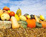 週末天氣睛好,多倫多舉辦多個豐收節。(Shutterstock)
