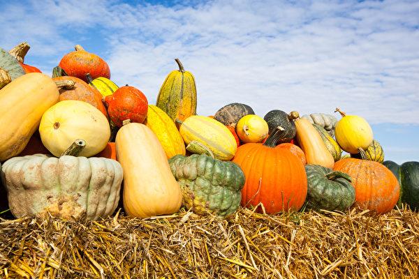 周末天气睛好,多伦多举办多个丰收节。(Shutterstock)