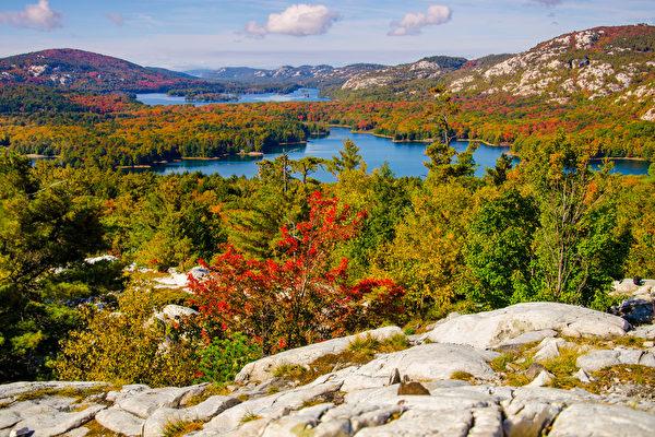 秋天到了,又是赏枫好时节。(Shutterstock)