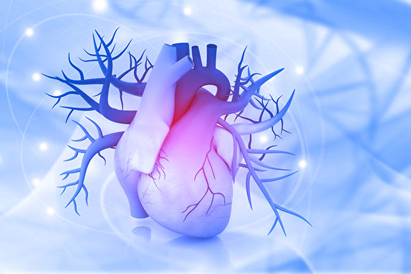 失去細胞的心臟也能重生?幹細胞的醫療突破