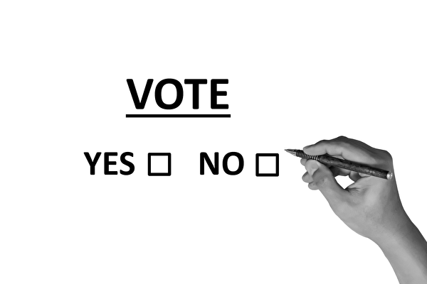 澳大利亚将于9月12日开始,就是否修改现行婚姻法、允许同性结婚进行全民邮政公投。(Pixabay)