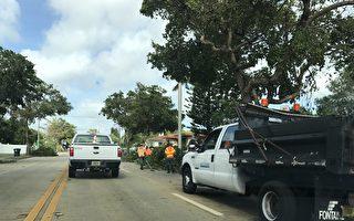 艾瑪颶風過後,工人在清理被颳倒的樹木,但是這樣的混亂太多了。(艾莉/大紀元)