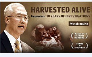 電影《活摘•十年調查》(英文版)海報。(官方提供)