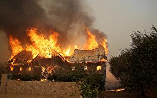 北加州葡萄酒之鄉的8個縣,10月9日清晨開始接連發生了14處山火。(Justin Sullivan/Getty Images)