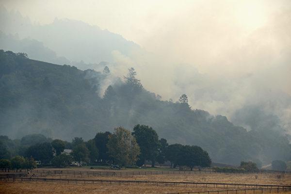 加州有史以来最惨重的火灾,十几起大火一夜之间窜起,一发不可收拾。图为10月11日,圣罗莎野火。](Ezra Shaw/Getty Images)