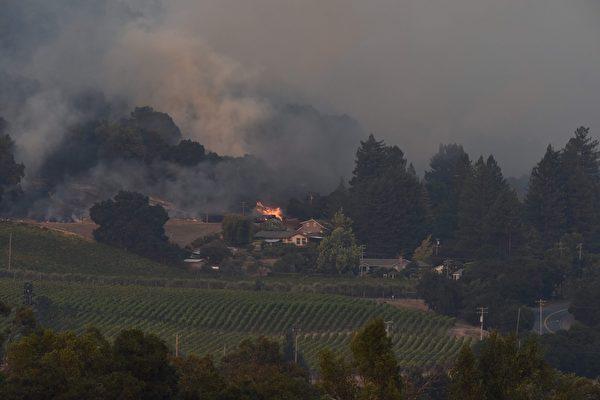 加州有史以来最惨重的火灾,十几起大火一夜之间窜起,一发不可收拾。图为10月11日,消防队员在Santa Rosa葡萄园救火。(ROBYN BECK/AFP/Getty Images)