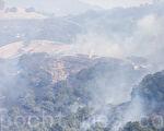 纳帕市东边的山上也燃起了野火。(曹景哲/大纪元)