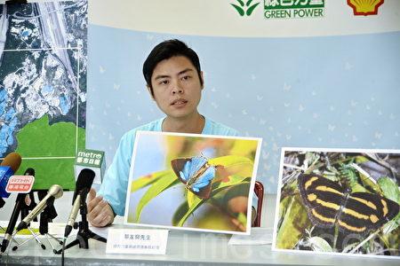 绿色力量高级环境事务经理单家骅表示,是次研究可反映大榄郊野公园边陲的植物多样性,他解释,蝴蝶为反映生态价值的指标生物,因蝴蝶的食性狭窄,可幼虫或成虫可能一生只食几㮔植物。(宋碧龙/大纪元)
