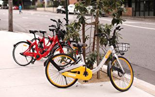 悉尼共享單車有:Reddy Go公司的紅色單車和oBike的黃色單車。 (Mark Kolbe/Getty Images)