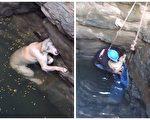 一只坠入深井的毛小孩差点灭顶,所幸及时获救。(视频截图/大纪元合成)