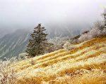 雪山之巅──四川西岭雪山景色。(曾铮提供)