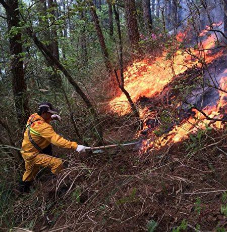 森林护管员除了查缉盗伐盗猎外,还要协助抢救森林大火。(林务局提供)