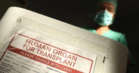 医师指出,活摘器官在中国大陆已形成产业。