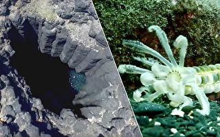 「看見澎湖南方四島」 一窺台原始自然風貌