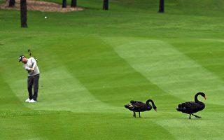 十九大前北京加强反腐 万达高尔夫球场被关