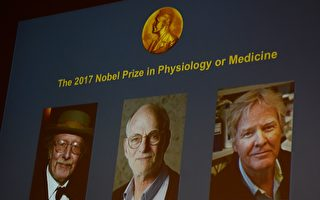 揭生物鐘奧祕 美三遺傳學家獲諾貝爾醫學獎