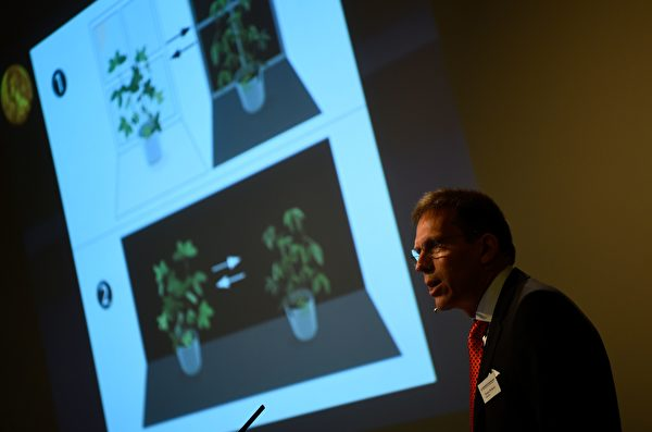 諾貝爾生理學或醫學獎評委會祕書長托馬斯•佩勒曼在瑞典卡洛林斯卡醫學院諾貝爾大廳宣布2017年諾貝爾生理學或醫學獎得主。(JONATHAN NACKSTRAND/AFP/Getty Images)