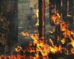 在干旱、低湿度和强风助力下,十几个野火正在北加州肆虐。(Justin Sullivan/Getty Images)