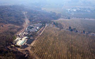 """火灾最严重的地区是被称为""""葡萄酒之乡""""的纳帕县和索诺马县。图为纳帕。(ELIJAH NOUVELAGE/AFP/Getty Images)"""