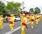 法轮大法团体的腰鼓队在青苹果节游行中分外夺目。(Alfred/大纪元)