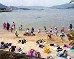 一家日本幼儿园的小朋友,在老师的带领下到沙滩游玩。(推特截图)