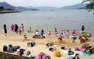 一家日本幼兒園的小朋友,在老師的帶領下到沙灘遊玩。(推特截圖)